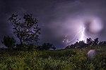 Природний парк Кам'янська Січ 01.jpg