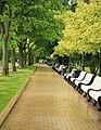 Сквер и парк у Новодевичьего монастыря. Москва. Россия.jpg