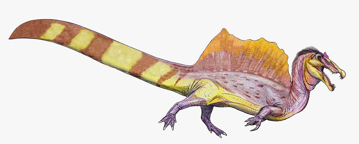 Спинозавр - новая реконструкция (flipped).jpg
