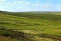 Урочище Синие Камни. Вид в северном направлении - panoramio.jpg
