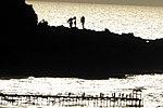 מבצר עתלית - אתרי מורשת במישור החוף 2016 (80).jpg