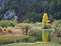 一抹金黄 - A Splash of Yellow - 2011.10 - panoramio.jpg