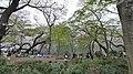 井の頭公園 - panoramio (27).jpg