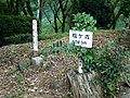 塩ヶ森山頂三角点 - panoramio.jpg
