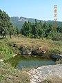 寿县八公山国家森林公园景色 - panoramio (47).jpg