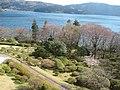 芦ノ湖 - panoramio (2).jpg