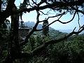 行義路至陽明山 - panoramio - Tianmu peter (24).jpg