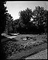 04.08.1964. Vue de la propriété. (1964) - 53Fi4722.jpg