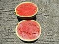 09577jfWatermelons Cuisine Philippinesfvf 04.jpg