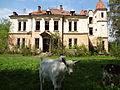 1.Палац Браніцьких у с.Підгірці.JPG