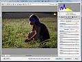 11-10-02-barnim-by-RalfR-02-03.jpg