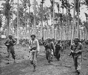 112th Cavalry Regiment - 112th RCT soldiers move through a coconut plantation at Arawe