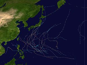 1958 Pacific typhoon season summary.jpg