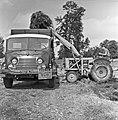 1960 Parc à taureaux du CNRZ-4-cliche Jean-Joseph Weber.jpg