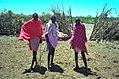 1993 155-35A Masai Mara.jpg
