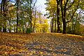 20081026 Krakow Park Bednarskiego 4410.jpg