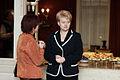 2009 m. Respublikos Prezidento rinkimai Dalia grybauskaitė 23.jpg