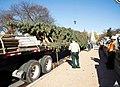 2015 Capitol Christmas Tree Arrival (23369487471).jpg