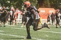 2016 Cleveland Browns Training Camp (28614406541).jpg