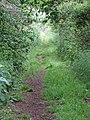 2018-06-10 Old railway track bed footpath, Trimingham, Norfolk (3).JPG