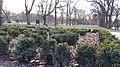 20200301 172032 Park Poniatowskiego w Łodzi March 2020.jpg