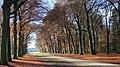 3956 Leersum, Netherlands - panoramio (13).jpg