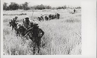 Operation Meade River - Image: 5th Marines Sweep Through Elephant Grass, 1968 (14994647958)