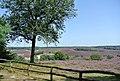 6991 Rheden, Netherlands - panoramio (5).jpg
