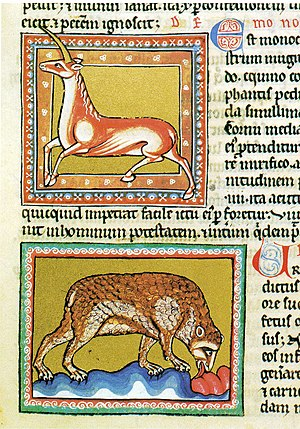 Legendary creature - Medieval bestiaries included mythical animals like the monoceros (above) alongside real animals like the bear.