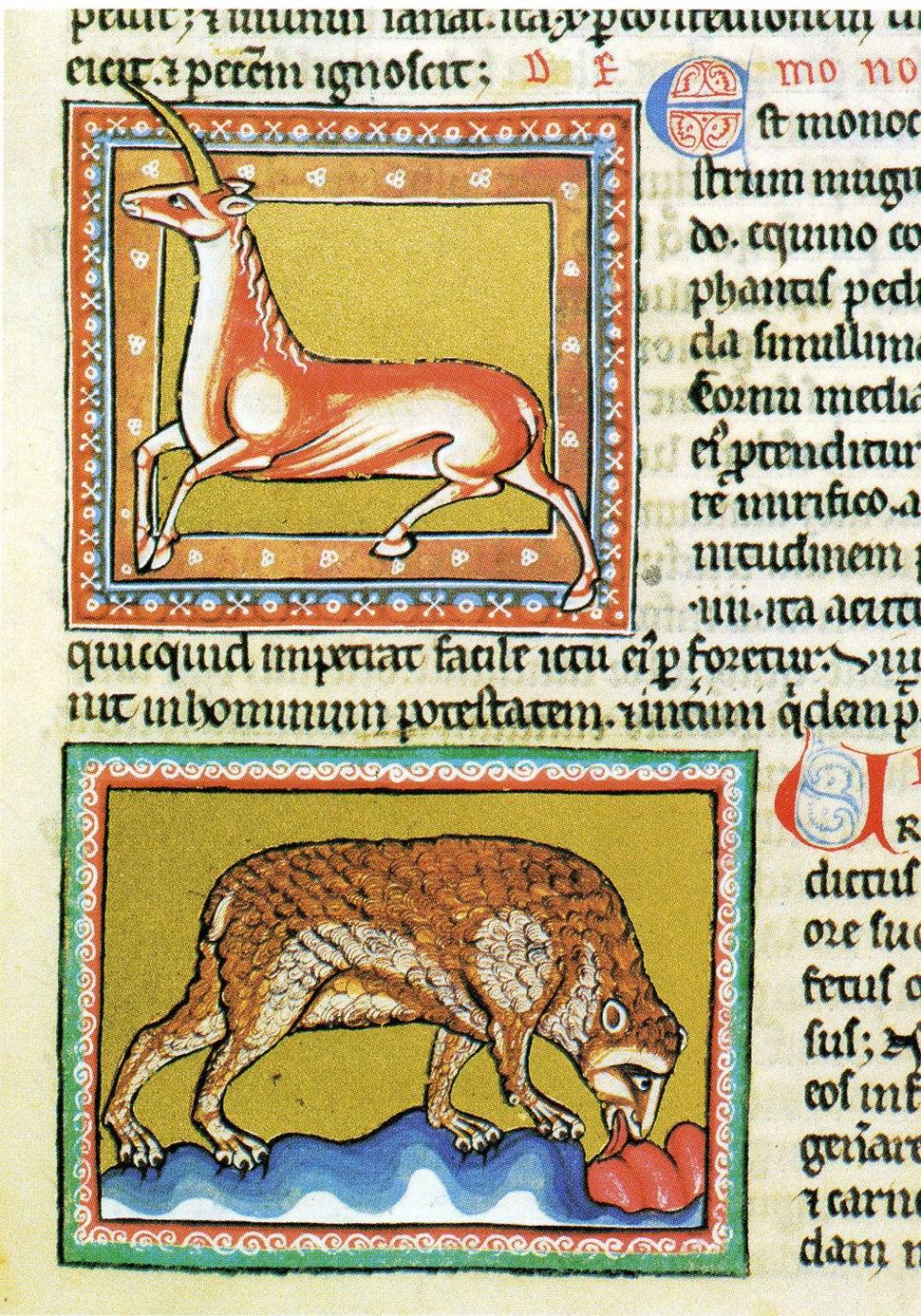 85-Oxford 1511 - Unicorno