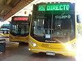 910 Rosario Bus.jpg
