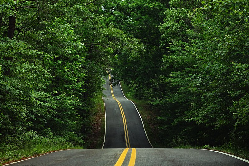 Road Dips Around Little River Canyon, an Alabama highway