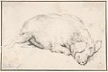 A Sleeping Swine MET DP800761.jpg