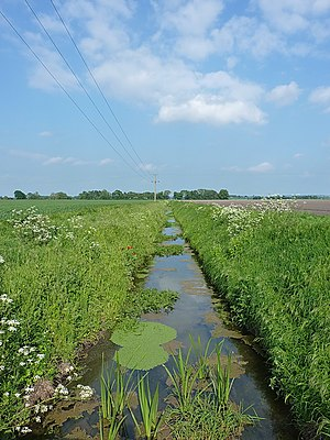 Weald Moors - A drainage ditch on Eyton Moor, draining into the Hurley Brook.