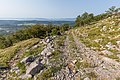 A forest road, Risnjak National Park, Croatia 06.jpg