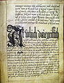 A page from Carmarthen Borough's Book of Ordnances, 1582.jpg