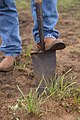 A soil scientists uses a Sharp Shooter to dig beneath the soil surface to determine soil health after a wildfire three weeks earlier. (24743704619).jpg