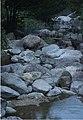 A stream in Shangchuan Island.jpg
