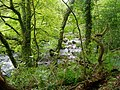 Afon Dwyfor - geograph.org.uk - 120142.jpg