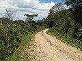 Alameda Cândido Brasil Moro - Palma - Santa Maria, foto 10 (sentido N-S).jpg - panoramio.jpg