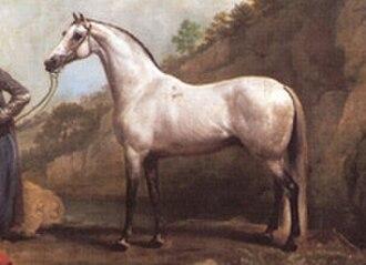 Aimwell - Alcock's Arabian, Aimwell's male-line ancestor