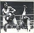 Alec Năstac vs Philip McElwaine 1976.jpg