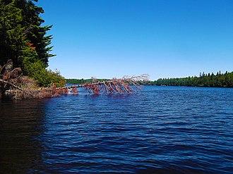 Opeongo Lake - Image: Algonquin Park