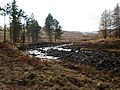 Allt Iarairidh crossing moorland and enteting forest - geograph.org.uk - 1765591.jpg