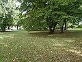 Alsterpark zwischen Kennedy- und Lombardsbrücke (2).jpg