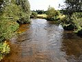 Amesbury - The River Avon - geograph.org.uk - 1459730.jpg