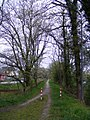 Andel- die Moselbahn - geo.hlipp.de - 37742.jpg