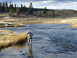 Fly fisherman above Ojo Calenti Bend on the Fi...
