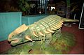 Ankylosaurus - Dinosaurs Alive Exhibition - Science City - Calcutta 1995 June 146.JPG