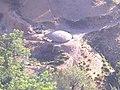 Ano en Tifarouine - panoramio.jpg